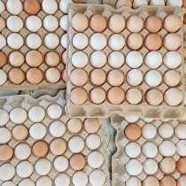 Яйцо куриное-домашнее, в Иркутске