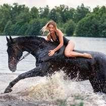Купание с лошадьми, в Нижнем Новгороде
