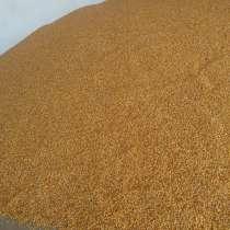 Семена кукурузы Туран-480 СВ, в г.Жаркент