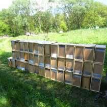 Пчелопакеты, Пчелосемьи, Карпатка 2020 с Доставкой, в г.Токмак