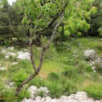 Продам земельный участок под ИЖС, в Симферополе