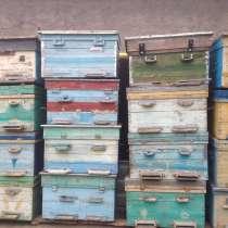 Улики лежаки, в Бахчисарае