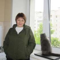 Услуги сиделки, в Новосибирске