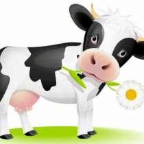 Продается Корова, в Ряжске
