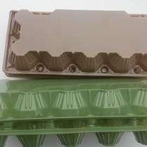 Упаковка для куриных яиц (ПЕТФ) 10 гнезд коричневая, зеленая, в г.Днепропетровск