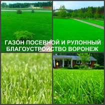 Газон рулонный и посевной Воронеж посадка, в Воронеже