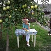 Элла, 54 года, хочет познакомиться – Познакомлюсь с мужчиной для серьёзных отношений, в г.Гродно