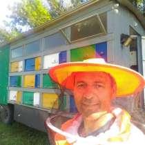 Мёд натуральный, в Приморско-Ахтарске