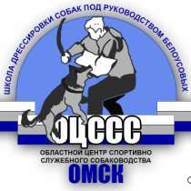 дрессировка собак в Омске, в Омске