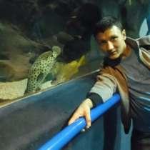 Ерлан, 31 год, хочет познакомиться – Ерлан, 31 год, хочет познакомиться, в г.Алматы
