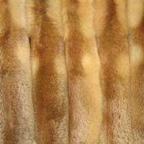 Шкуры рыжей лисы, в Перми