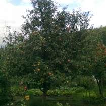 Земельный участок сад, в Миассе