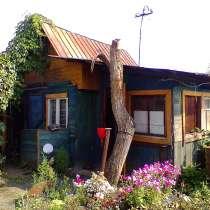 Продам ухоженный сад в Любителе-3, в Челябинске