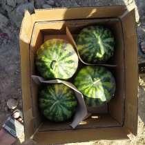 Фрукты и Овощи из Солнечного Узбекистана, в г.Ташкент