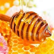 Мёд Башкирский и мёд в сотах, в Екатеринбурге