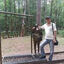 Игорь, 59 лет, хочет пообщаться, в Иванове
