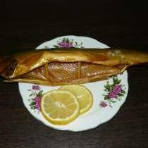 Северная рыба, в Кемерове