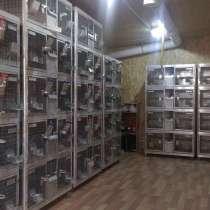 Завод реализует жмых льняной 38-40% на АСВ оптом, в Екатеринбурге