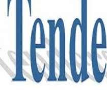 Тендер, конкурс, аукцион, в Перми