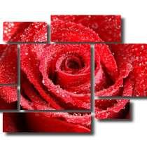 Модульная картина: Роза под дождем, в Тольятти