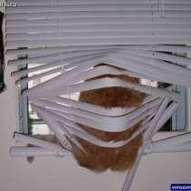 Жалюзи, рулонные шторы, в Губкине