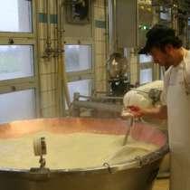 Экскурсия на производство: итальянский сыр с плесенью Горгон, в г.Милан