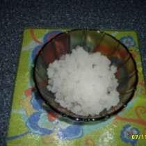 рисовый морской гриб, в Саратове
