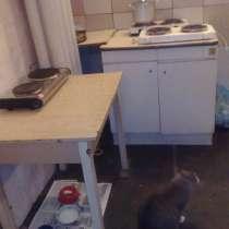 Сдаем койко-места в общежитии, метро Пл Восстания, в Санкт-Петербурге