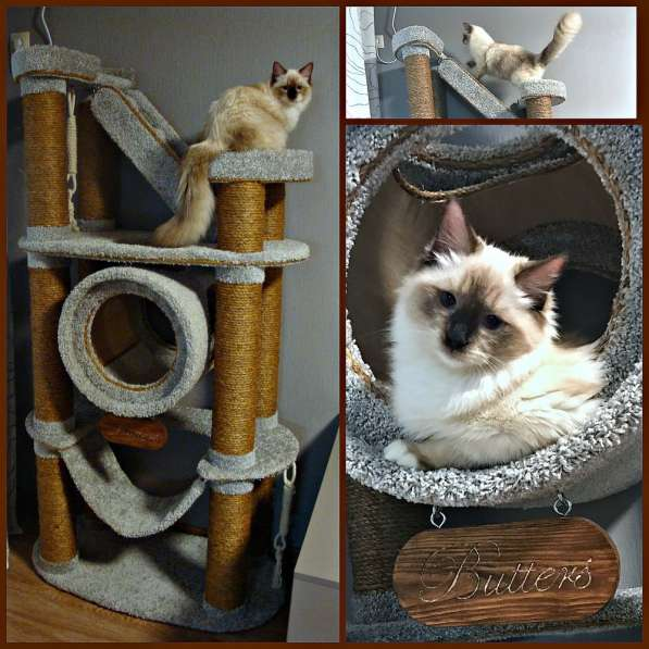 Изготовление комплексов и домиков для кошек на заказ в Ростове-на-Дону фото 15