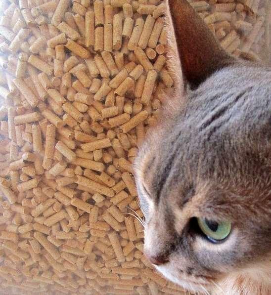 Древесный наполнитель для кошек