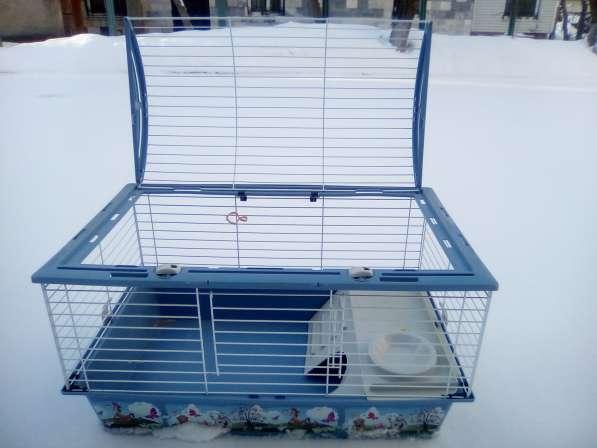 Клетка для свинок и кроликов в Химках
