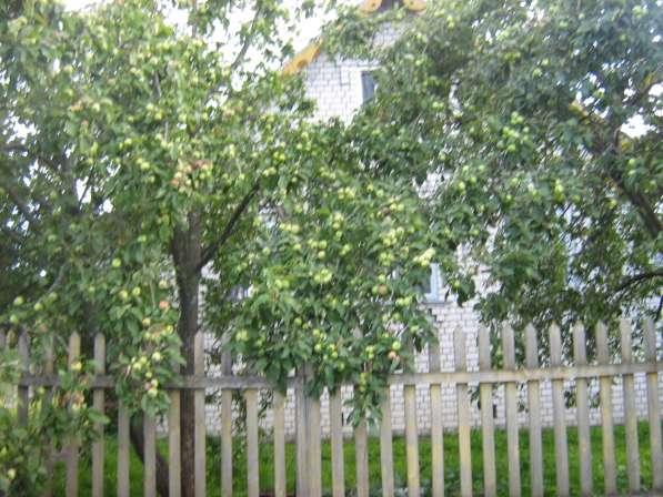 Дом кирпичный с яблоневым садом.120км от Москвы в Кимре фото 5