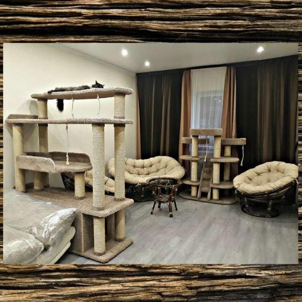 Изготовление комплексов и домиков для кошек на заказ в Ростове-на-Дону фото 17