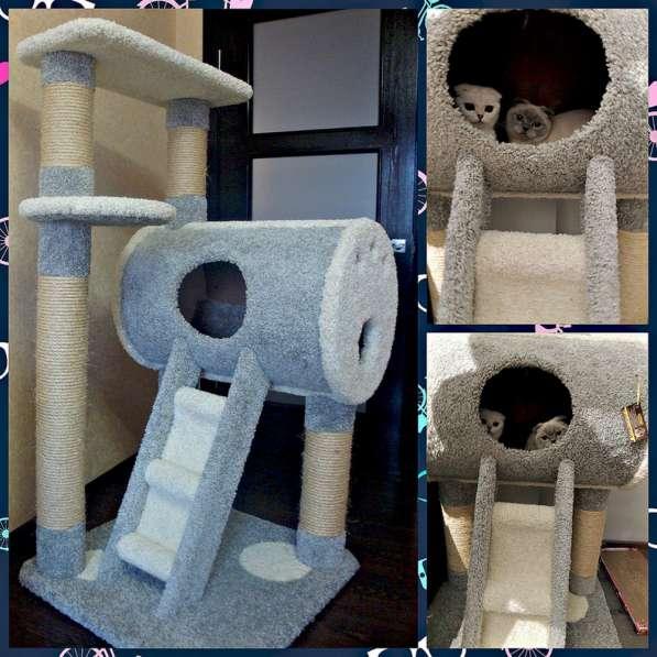 Изготовление комплексов и домиков для кошек на заказ в Ростове-на-Дону фото 3