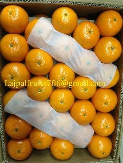 фрукты мандарин