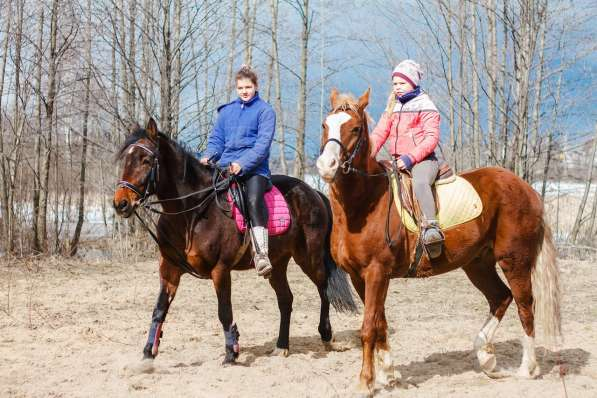 Уроки верховой езды.Обучение детей и взрослых. в Нижнем Новгороде фото 3