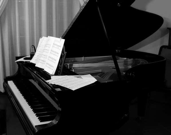 Уроки игры на фортепиано (синтезаторе)