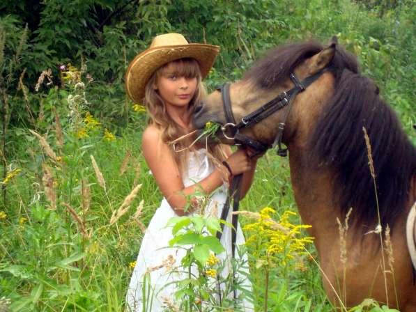 Конные прогулки в Нижнем Новгороде фото 4