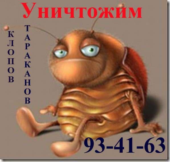 Уничтожение клопов тараканов в Томске