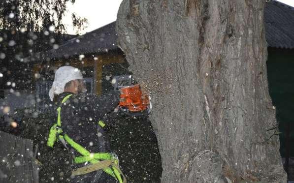 Удаление аварийных опасных труднодоступных деревьев