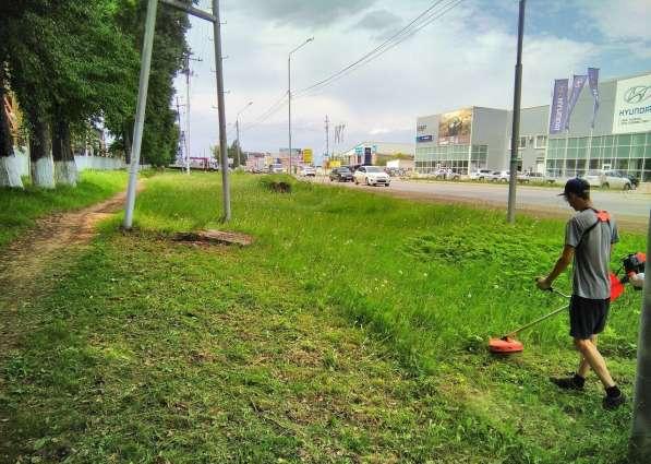 Покос газонов, травы и зарослей на участке в Белгороде