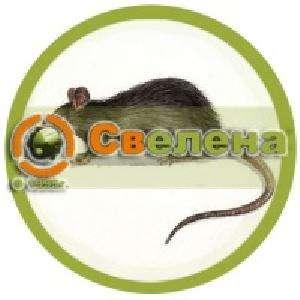 Уничтожение крыс и мышей в Москве и области