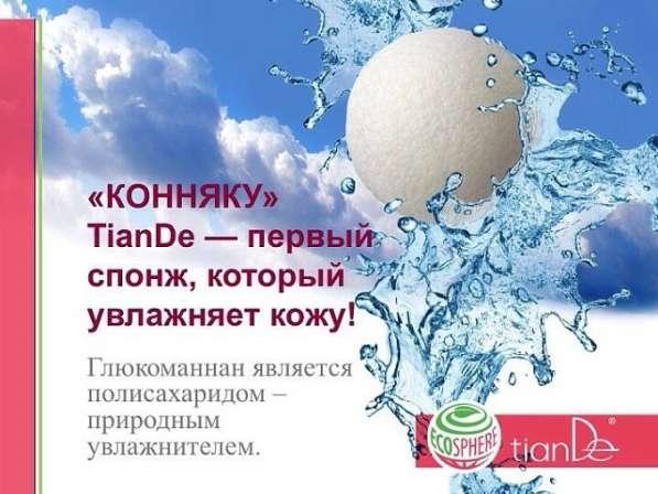 Спонж КОННЯКУ