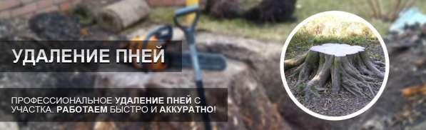 Корчевание пней Белгород. Удаление пней Белгород