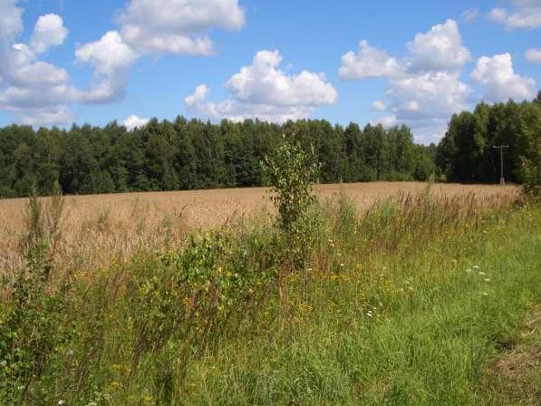 Земельный участок, лес и речка в подарок