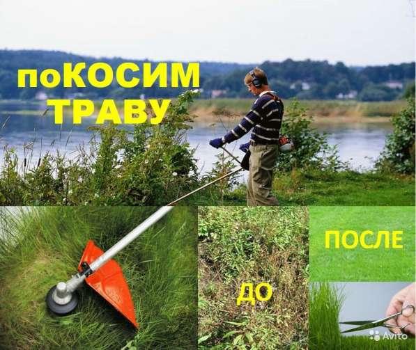 Покос травы, бурьяна, скашивание газона