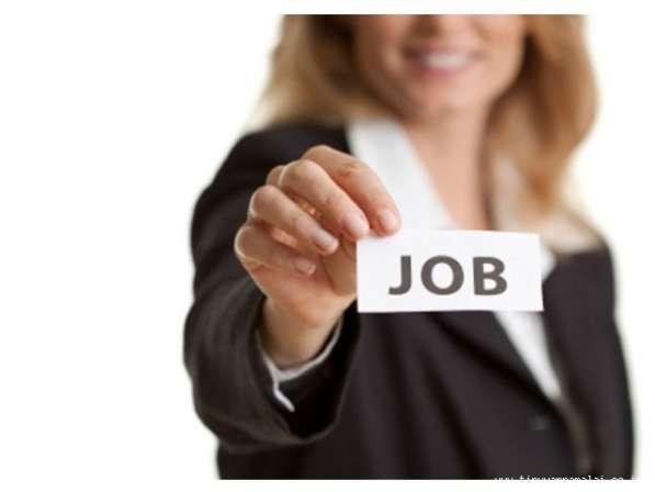Разработка резюме и размещение на сайтах JOB