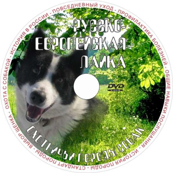Фильмы о собаках на DVD