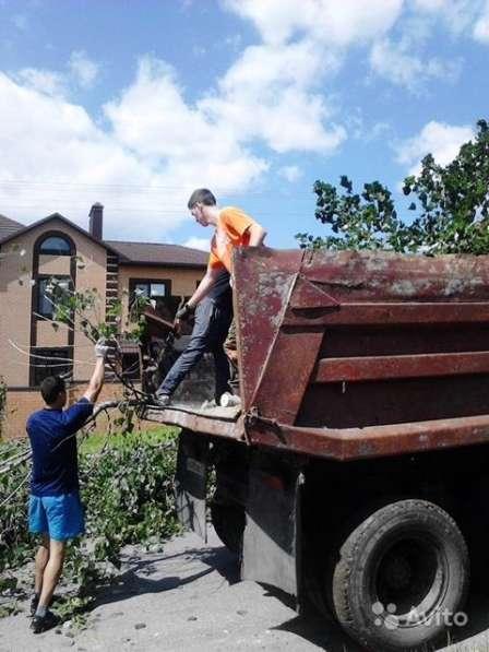 Вывоз строительного, бытового и растительного мусора