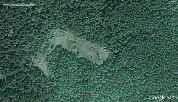 Участок с лесом в Красноярске фото 10